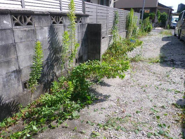 駐車場 除草作業